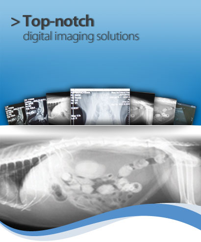 > Top-notch digital imaging solutions